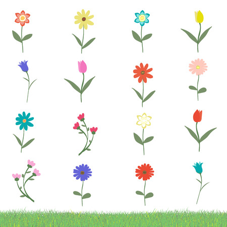 Set of many variation of flowers isolated on white background with grass sample vector illustration. Happy, cute, hand drawn with love.
