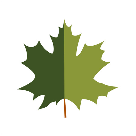 Green dark green vector maple leaf isolated on white background Illustration