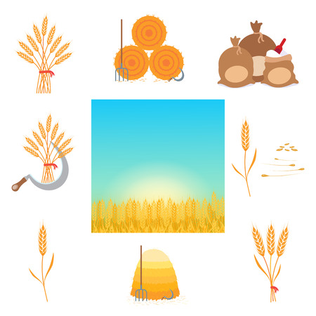 Wheat harvesting flat style design vector illustration set. Farming tools and producing things. Whole wheat grain with seeds, sickle, hayforkm hay bale, bags of flour, wheat field landscape isolated.