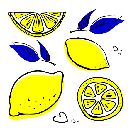 Hand drawn fruits lemon set vector illustration isolated on white background. Sketch style collection of colored leaves with shapes and shapes.