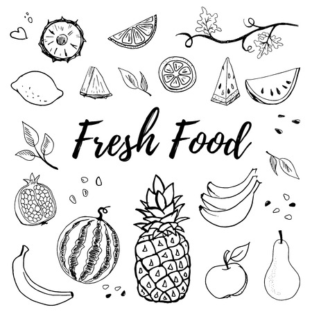 Hand drawn fruits set vector illustration isolated on white background. Pineapple, apple, pear, lemon, banana, watermelon, pomegranate. Whole, parts, leaves and brunches sketch style collection. Stock Vector - 124425133