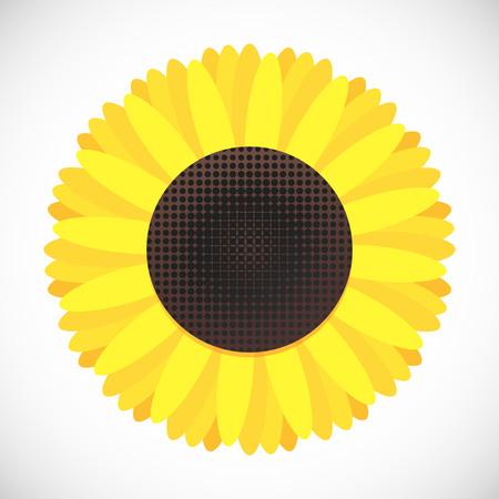 Sunflower flat style design gradient icon icon vector illustration isolated on white background. Symbol of fall harvest. Ilustração