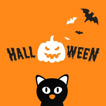 Happy Halloween text postcard banner with scary face on pumpkin, bats, witch cat and text happy halloween isolated on white background flat style design. Stock Vector - 128794259