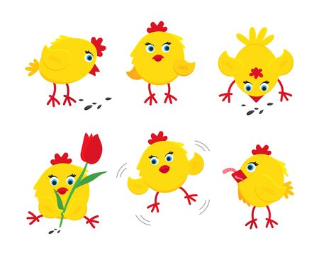 6 cute funny little chick chiken hen cartoon flat style design vector illustration set isolated on white background. Funny yellow chicken standing up on the ground.