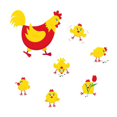 Yellow and red chicken funny cute little chicks babies flat style design vector illustration. Chicken farming poultry symbol icon signs. Domestic bird isolated on white background.