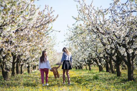 Cijfers van twee romantische minnaars van meisjes die in de lente door de bloementuin lopen met een zacht beerstuk speelgoed in hun handen