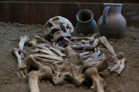 Les fouilles archéologiques d'un ancien homme homo sapiens humain sont des squelettes d'os de Neanderthal raisonnables et un crâne humain