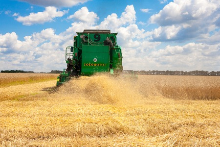 Krasnodar Territory, RUSSIA - July 08 2017 : Harvester machine to harvest wheat field working. Combine harvester agriculture machine harvesting golden ripe wheat field. Agriculture