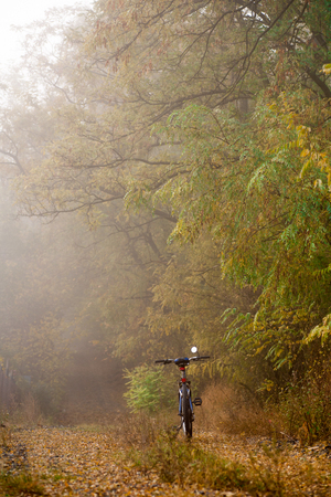 The path in the autumn forest and the bike hardtail. Bicycle lying on the ground in the forest bicycle in the autumn forest