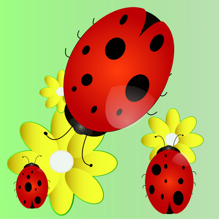 bright ladybug in a good cartoon style on the flowers of chamomile in a green field