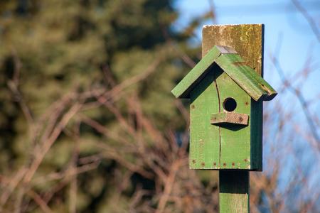 birdhouse wooden copyspace birds home tree birdbox . A house for feeding birds and for arranging bird nests.
