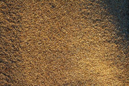 golden sand on the beach closeup glitters with grains poured under the rays of the setting sun 写真素材