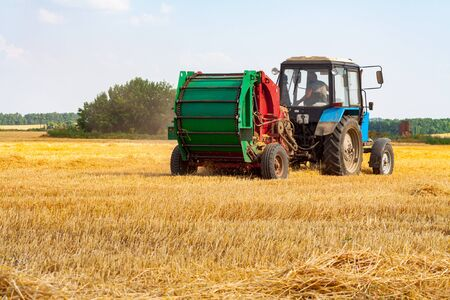 A tractor with a trailed bale making machine collects straw rolls in the field and makes round large bales