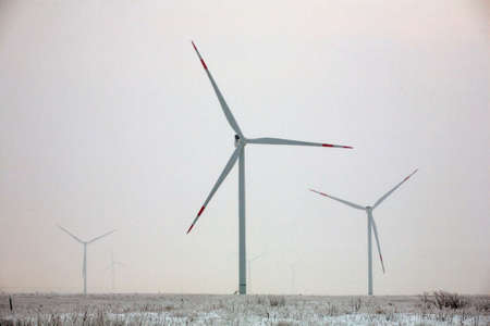 Field of wind turbine towers with large blades in winter on background of snow at sunrise