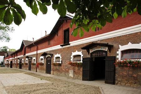 racehorses: Stallen van beroemde stoeterij in 1886 opgericht in Napajedla, die voornamelijk gedragen renpaarden, Engels Volbloed, Moravië, Tsjechië