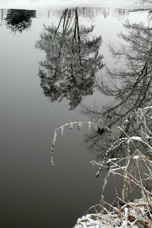 morava: Winter morning in the mirror of the Morava River in Litovel Stock Photo