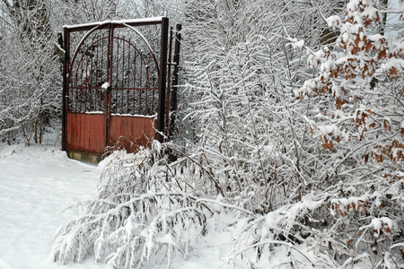 Old rusty metal gate covered by snow in winter day photo