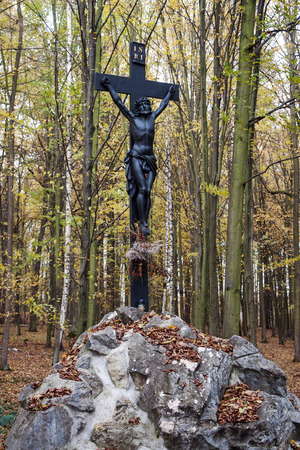 crux: Statue of Jesus Christ on a cross in the forest near Litovel , Czech Republic