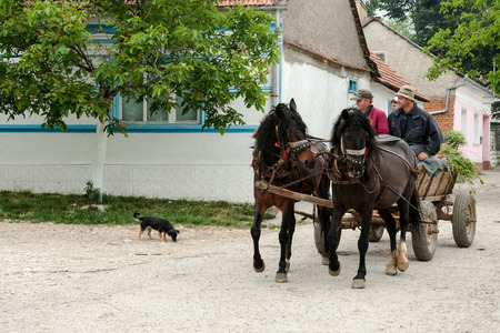 purely: VILLAGE SVATA HELENA, ROMANIAN BANAT, MAY 28, 2009 - An unidentified people  returning from the fields with a horse carriage. Svata Helena is one of six purely Czech villages in Romania, where the Czechs live more than 150 years Editorial