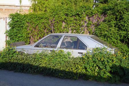 immobile: El coche abandonado pie e inm�vil en la maleza al lado de la carretera