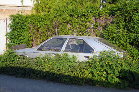 abandoned car: The abandoned and immobile car standing in the weeds beside the road