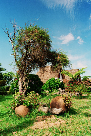 nook: Nook in the garden in village of Santana, island of Madeira, Portugal Stock Photo
