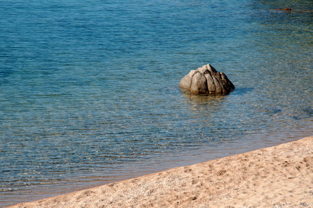 Stone like a lotus flower on the beach of the French island of Corsica
