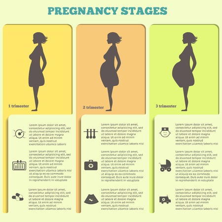 Pregnancy and birth infographics and pregnancy stages. Icon vector set.