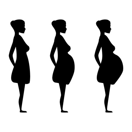 Silhouette of a pregnant woman in the three trimesters. Pregnancy stages Vector