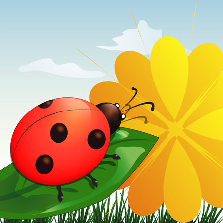 Ladybug on leaf with yellow flower in cartoon style Vector