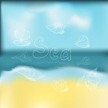 vague: card with seashells scattered on the background of vague
