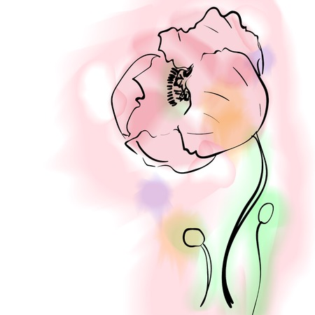 Digital watercolor flower poppy. Splashes drips of paint. Vector illustration.