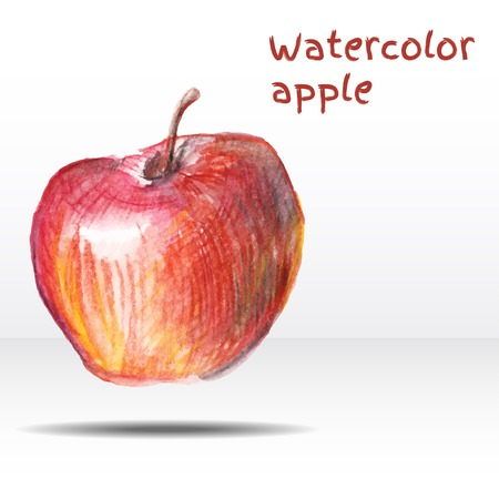nature one painted: Watercolor apple isolated on white background.  Illustration