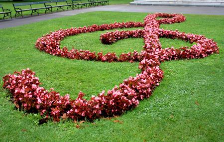 chiave di violino: Chiave di violino a terra fatta da erba e fiori a Vienna, Austria
