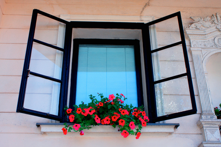 vintage black window with flower box. Stock Photo
