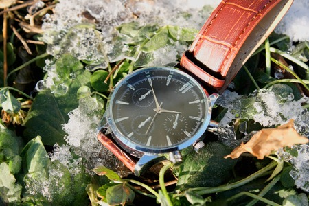 Luxury Wristwatch in Snow