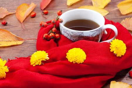 A mug of tea is wrapped in a warm scarf in the fall against the backdrop of falling leaves Foto de archivo