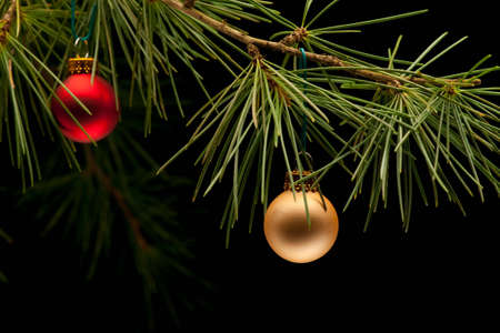Red and golden matte bauble christmas ornaments on pine tree branch. Black background. Shallow focus on golden ball.