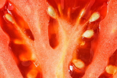 Macro detail of  cutted tomato slice with seeds Stock Photo