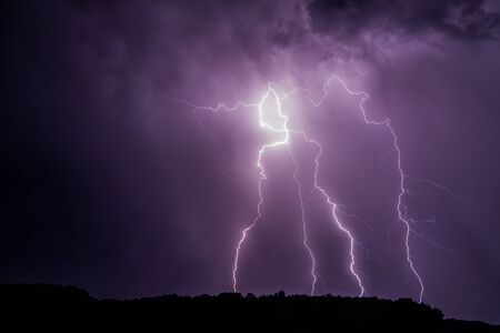 Lightnings over a forest near Morava river during summer night thunderstorm, Slovakia.