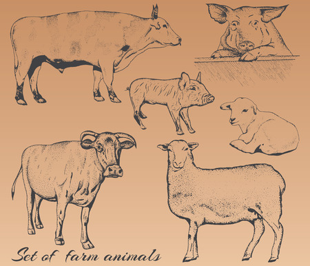 hand drawing: set of farm animals.Pencil drawing.Vintage style.Offset printing Illustration