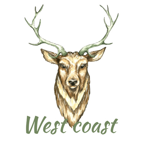 paiting: Face of deer.Watercolor vector illustration on white background Illustration
