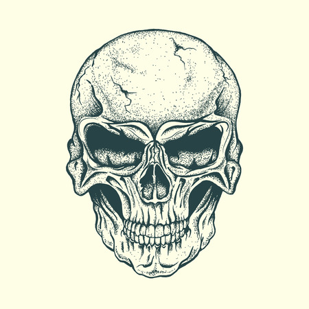 Skull of human .Vector illustration.Hand drawn style