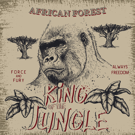 Vintage label with gorilla .Grunge effect.Textile design