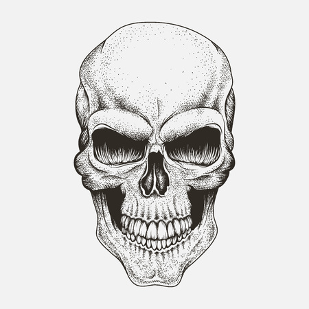 Scary skull of human .Engraved style.Vector illustration