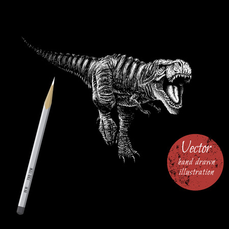 monstrous: tyranosaur rex attack.Drawing by white pencil.Vector illustration Illustration