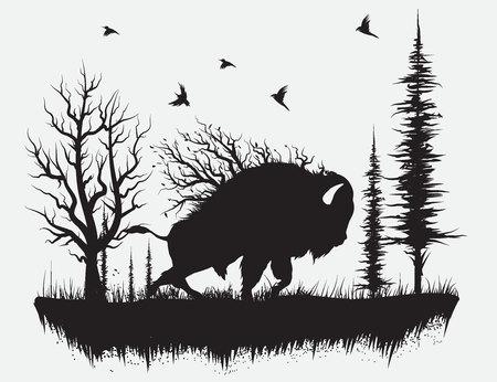 Buffalo che cammina nella foresta Illustrazione disegnata a mano di vettore Vettoriali