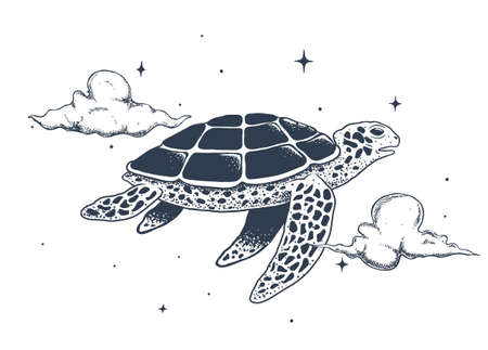 flying turtle in the sky
