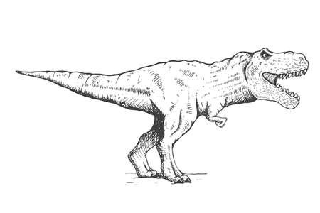 Tyrannosaurus and moon Vettoriali