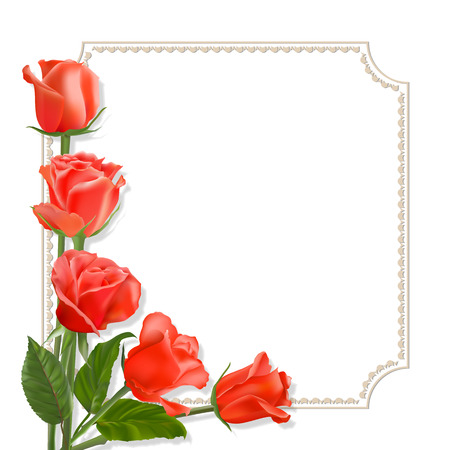 lifelike: Breathing red roses with golden frame on a white bacground. lifelike colors with place for greetings for any holiday.
